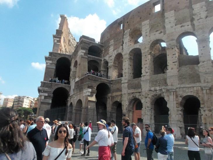 Colosseum, Rome, Italy, Pineiros