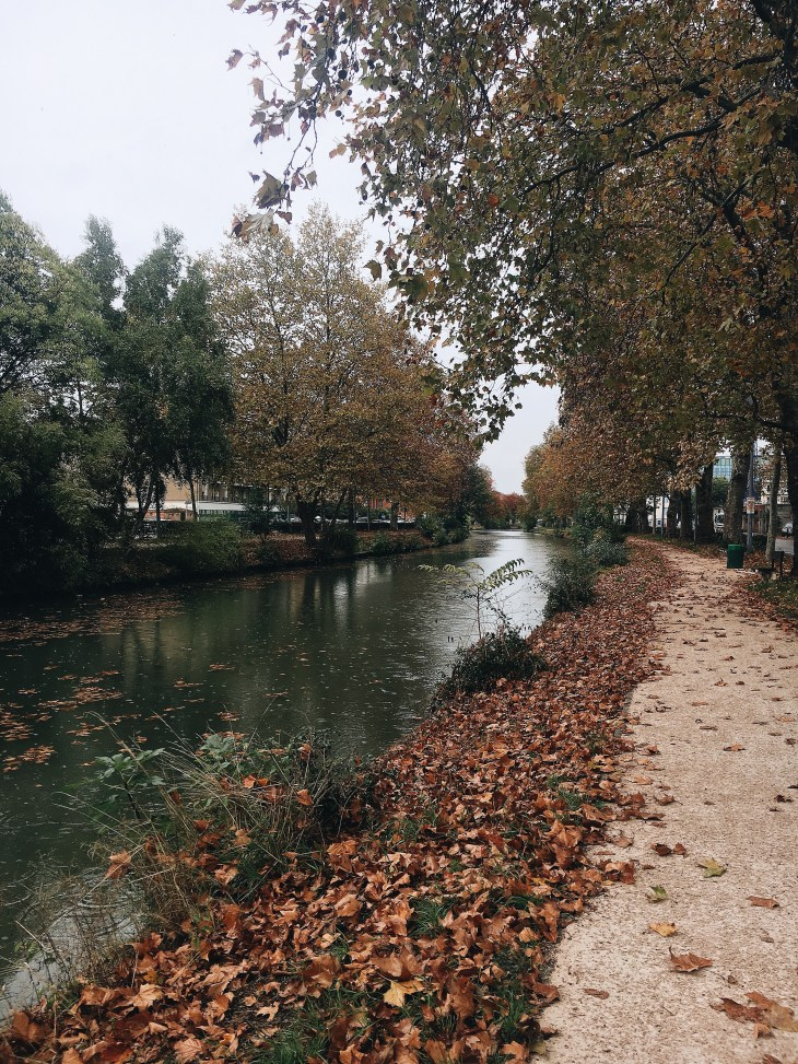 Toulouse_Toulouse_France_MailyanEmiliya_Photo4.jpg