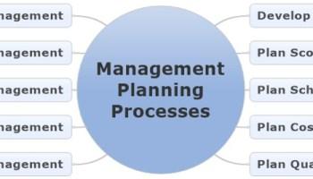The Management Planning Processes