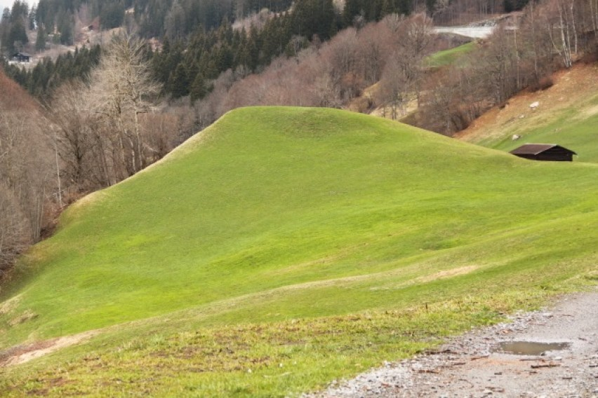 Grün Berg
