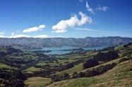 NZ214