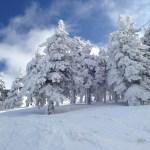 brasov et ski (17)