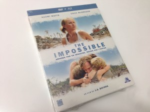 the impossible france (2)