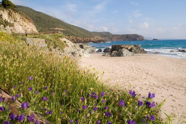 Sardinie-verlaten strand