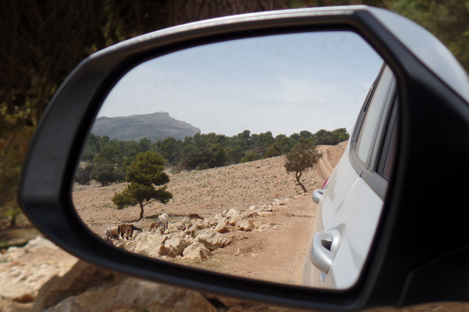 autospiegel costa blanca spanje