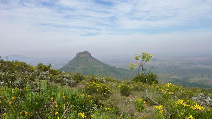 zuid-afrika route kaapstad johannesburg