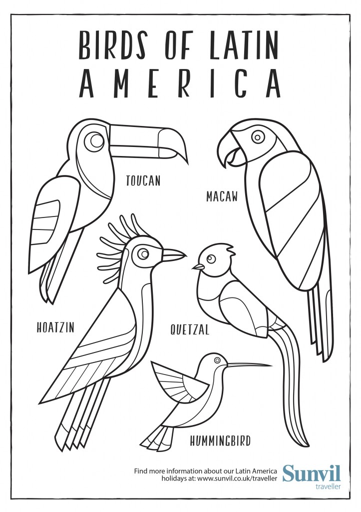 Birds of Latin America