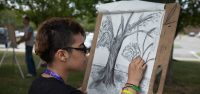 Fun Facts About Summer Sessions