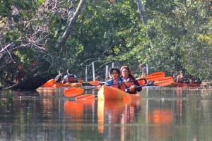 Kayaks sliding through Back Bay National Wildlife Refuge.