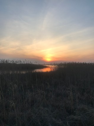Sunset in Back Bay