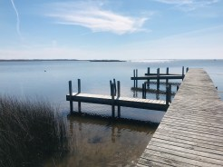 Here is the dock at Wash Woods. There are a couple Osprey Nest near by.