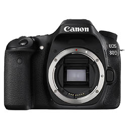 Canon 80 food photography camera