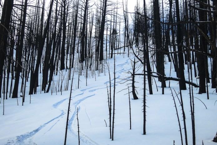 Thin snow powder skiing