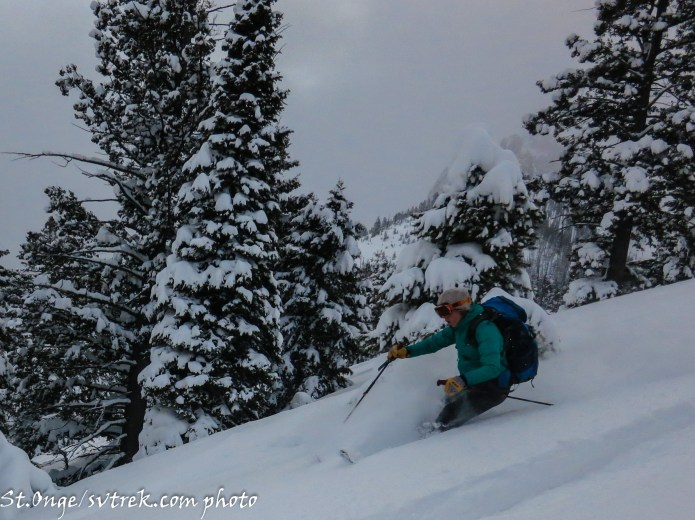 Deep powder above Bench Hut