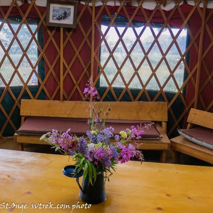 wildflower yurts