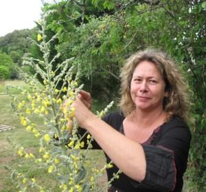 Catherine Heine exerce en Dordogne, près de Sarlat. On la voit ici à côté du bouillon blanc!