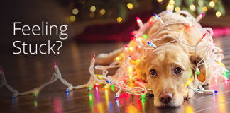 Syncplicity by Axway Holiday Tip 5