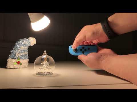 クリスマスの定番(?) Raspberry Pi と Philips Hue でクリスマスツリーをライティング (Nintendo Switch Joy-Con version)