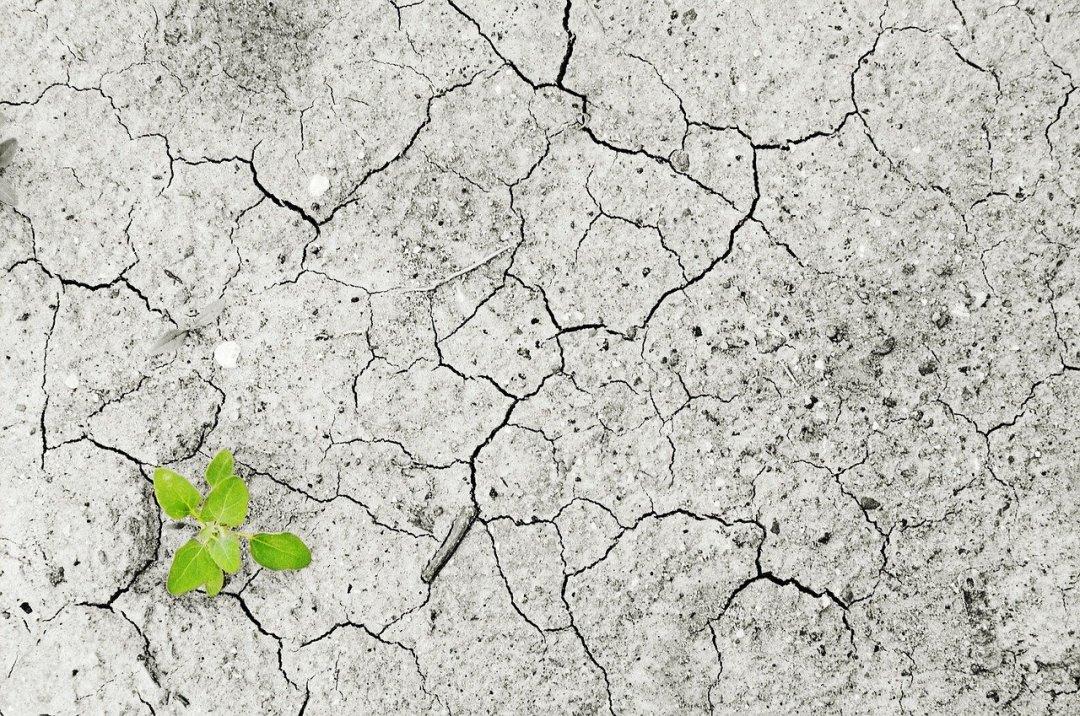 Descubre la verdad sobre el cambio climático en la Tierra
