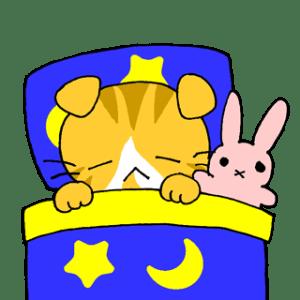 23ポキオおやすみ
