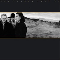 Joshua Tree U2 smaller 2