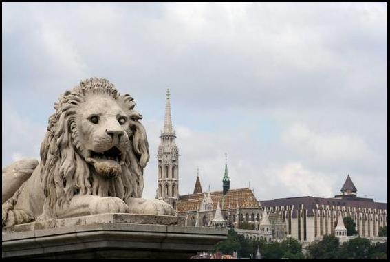 4320749-Lion_Statue_on_the_Chain_Bridge-Budapest