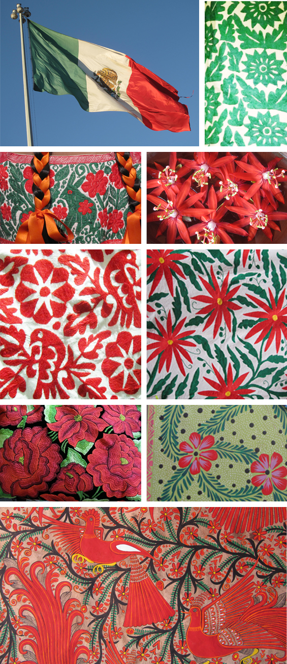 mexico in green and red mexican christmas poinsietta