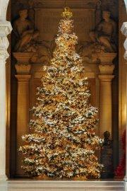 San Francisco's World Tree of Hope