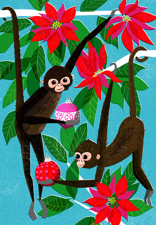 spider-monkey