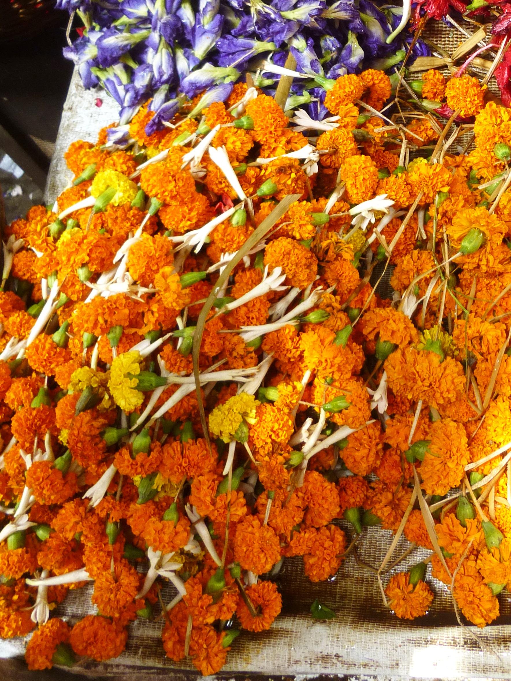 Marigolds !