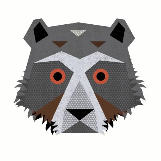 FL15_Tierra-OB-FoxHead