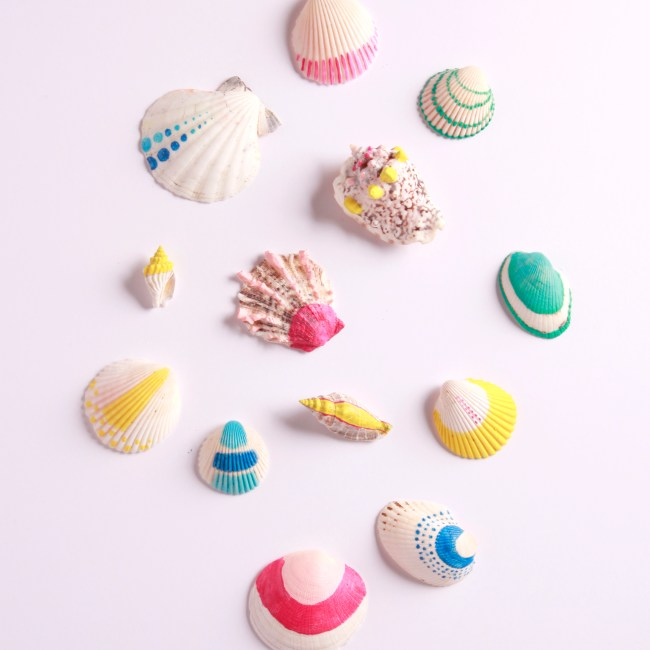 painted shells