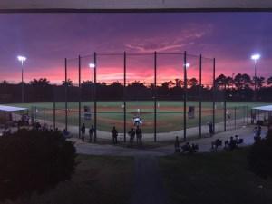 A Night at the Ballpark