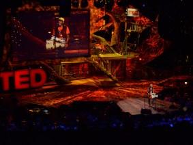 """""""The musician's musician"""": Pedrito Martinez at TED2013"""