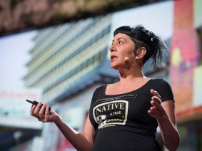 Using public space as a canvas for imagination: Lesley Perkes at TED2013
