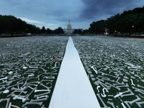 One Million Bones on the National Mall, all countable in this gigapixel image