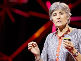 Robin Chase's new ideas? The Zipcar founder on how drivers could generate wifi and why we need more sharing platforms
