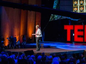Questions you may have about Mary Lou Jepsen's TED Talk