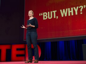 A scandal of epic proportions hidden in plain sight: TED Prize winner Charmian Gooch reveals her wish at TED2014