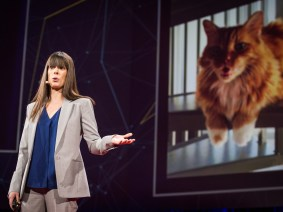 How to keep 240 million Twitter users safe: Del Harvey at TED2014