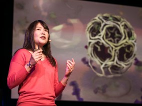From 3D animated molecules to tethered kite-copters: A recap of the TED2014 Fellows Talks, Session 1