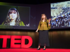 Social movements beyond Twitter: Zeynep Tufekci live at TEDGlobal 2014