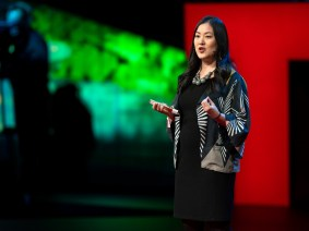 New insights on climate change action, a milestone for Maysoon Zayid and more TED news