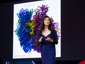 Getting started: Notes from Session 2 of TEDWomen 2018