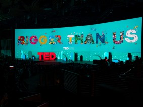 In Case You Missed It: Highlights from TED2019