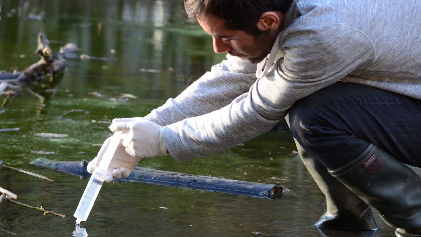 A person testing the water quality of a stream