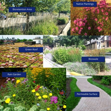 Various labelled examples of green infrastructure
