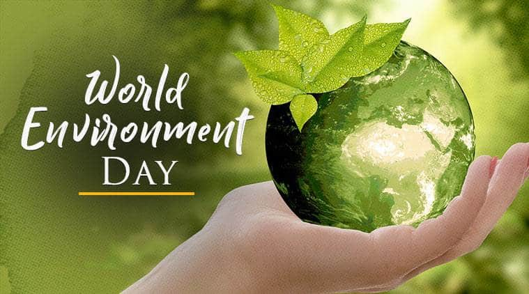 How to Celebrate World Environment Day