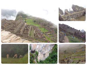 マチュ・ピチュ は、アンデス山麓に属するペルーのウルバンバ谷に沿った山の尾根にある、15世紀のインカ帝国の遺跡。 当時、インカ帝国の首都はクスコでした。インデス文明は文字を持たないかった為、この遺跡が何のために作られたのか、首都との関係・役割分担など、その理由はまだ明確にわかっていないそうです。 1983年世界遺産に登録されました。 因みにマチュピチュ2,000m、クスコ3,400mで、クスコの方が高度が高いです。