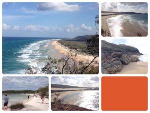 フレーザー島は、世界でもっとも大きな砂島で、1992年、世界遺産に登録されました。島は原住民(アボリジニ)から「クガリ(パラダイスという意味)」と呼ばれています。海岸がとても綺麗(まさにパラダイス)でした!